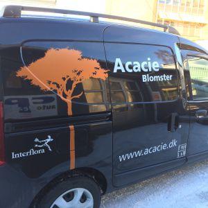 Acacie Blomster bildekoration lavet af skiltehus.dk